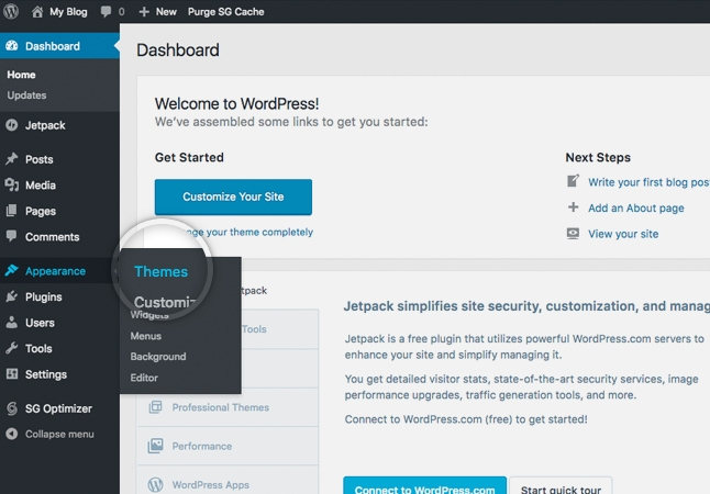 WORDPRESS WEB DEVELOPMENT  - Kaira Software